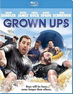 Grown Ups (Blu-ray Disc, 2010)